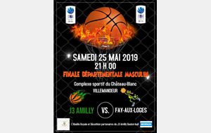 Finale Séniors 4 Entente Amilly Chateau renard